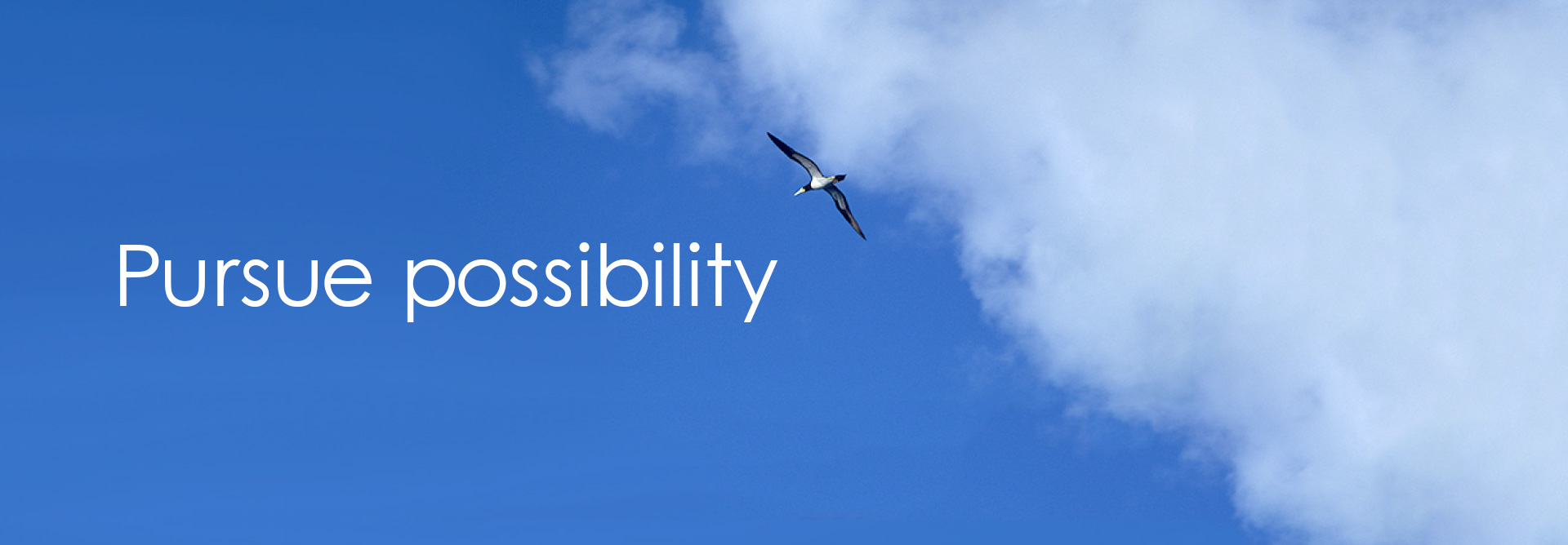 Pursue possibility.