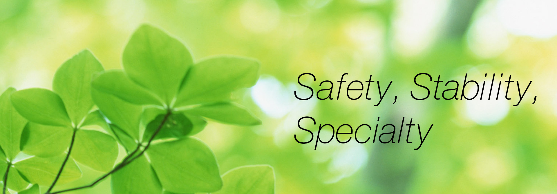 Safety, Stability, Specialty